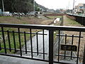 Doho River in Sagamihara.JPG