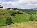 Downland, Cerne Abbas - geograph.org.uk - 907505.jpg
