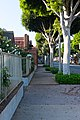 Downtown Whittier California Greenleaf ave east side of street.jpg