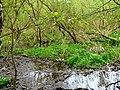 Drahanské údolí - panoramio (10).jpg