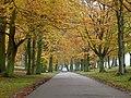 Drive to Luton Hoo (geograph 4247326).jpg