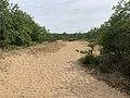 Dunes Charmes Sermoyer 1.jpg