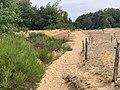 Dunes Charmes Sermoyer 16.jpg