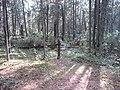 Dusetų sen., Lithuania - panoramio (115).jpg
