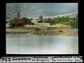 ETH-BIB-Lammbach, Dammbruch am Brienzer See-Dia 247-00236.tif
