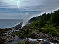 East Coast Trail (43986172102).jpg
