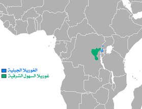 Eastern Gorilla area-ar.png