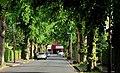 Eastleigh Drive, Belfast (3) - geograph.org.uk - 1892030.jpg