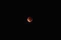 Eclissi Lunare.jpg