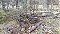Electric Fence (Glen Lui) on Mar Lodge Estate (15MAR13) (12).jpg
