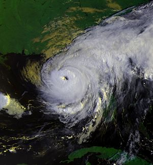 Hurricane Elena - Hurricane Elena early on September 1, shortly before attaining peak intensity and accelerating to the west