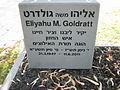 Eliyahu M. Goldratt grave 3.jpg