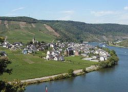 Ellenz and Mosel River with vineyards.jpg