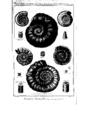 Encyclopedie volume 5-168.png