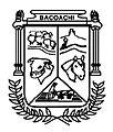 Escudo Bacoachi.jpg