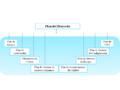 Estructura de un Plan de Proyecto.PNG