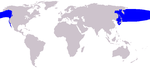 North Pacific right whale range