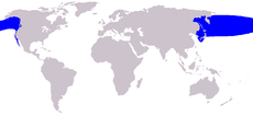 .::Ballena Franca del Pacífico Norte 230px-Eubalaena_japonica_range_map