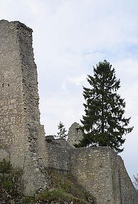 Farnsburg ruin
