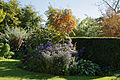 Feeringbury Manor flower herbaceous shrub border, Feering Essex England 3.jpg