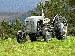 Ferguson tractor at Whitewell Croft (geograph 1927563).jpg