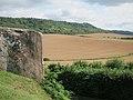 Fields near Coldrum Longbarrow - geograph.org.uk - 2530656.jpg