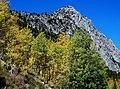 First Color in Rock Creek Canyon, Sierra Navada 9016 (30411811375).jpg