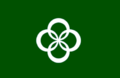 Flag of Wazuka Kyoto green version.png