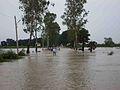 Flood in Junagarh.jpg