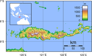 Topography of Flores
