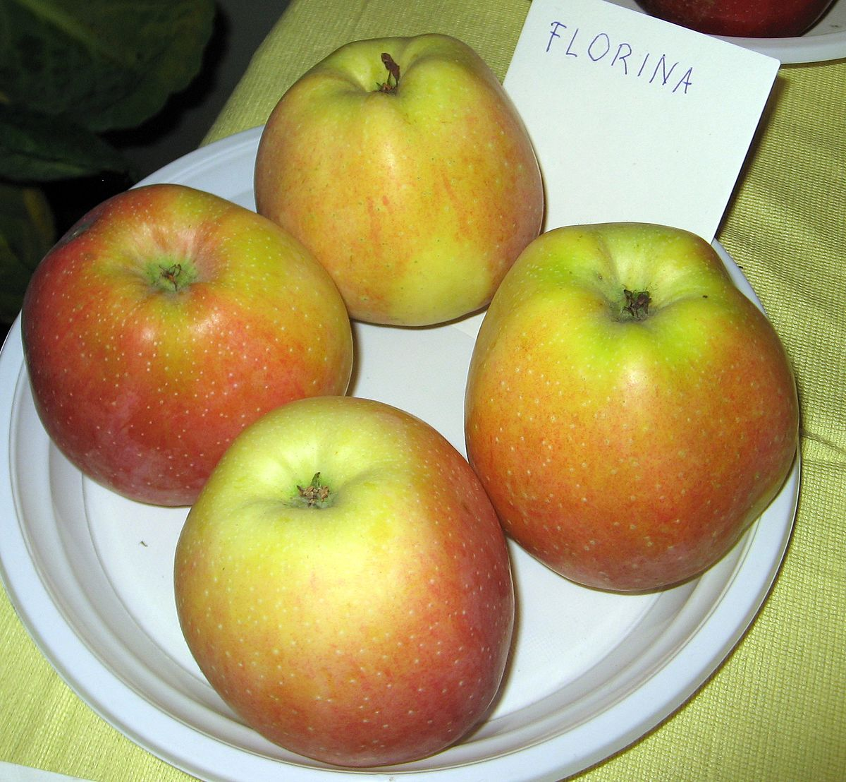 Florina  Apple