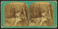 Flume Cascade, above the Road, from Robert N. Dennis collection of stereoscopic views.png