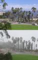 Fog&Sunny vertical.png