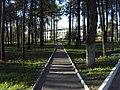 Fokinskiy rayon, Bryansk, Bryanskaya oblast', Russia - panoramio (111).jpg