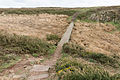 Footbridge at Les Landes, St Ouen, Jersey.JPG
