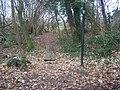 Footbridge in small woods near St Vincents Lane - geograph.org.uk - 1178167.jpg