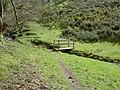 Footbridge over the Stream - geograph.org.uk - 760529.jpg