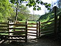 Footpath from Janet's Foss - geograph.org.uk - 502652.jpg