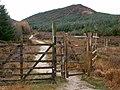 Footpath leading into North Glen Sannox - geograph.org.uk - 282890.jpg