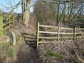 Footpath leading towards Green - geograph.org.uk - 692112.jpg