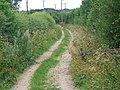 Footpath near Dunbridge - geograph.org.uk - 1432283.jpg
