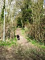 Footpath off Marshcroft Lane - geograph.org.uk - 1194746.jpg