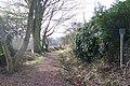 Footpath off Mowson Lane, near Worrall - geograph.org.uk - 725457.jpg