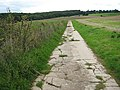 Footpath to Brand Green - geograph.org.uk - 935927.jpg