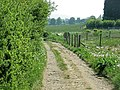 Footpath to Wickhamford - geograph.org.uk - 424050.jpg