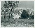 Fort Wyman in Rolla, Missouri.jpg