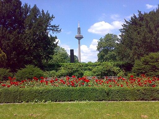 512px-Frankfurt_Gedenkstele_Gr%C3%BCneburgpark_mit_Fernsehturm_und_Rosenbeet.jpg