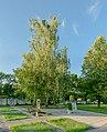 Friedhof Haunoldstein 8451 Planar 3.jpg