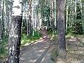 G. Novouralsk, Sverdlovskaya oblast', Russia - panoramio (47).jpg