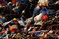 Garbage, Beijing.jpg